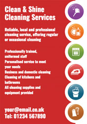 household cleaning leaflets