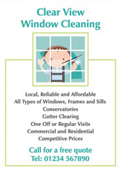 light green window cleaner leaflets
