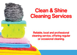 cleaning scourer flyers
