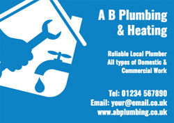 local plumber flyers