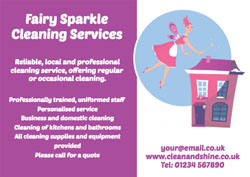 cleaning fairy flyers