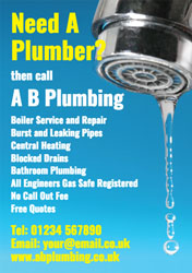 need a plumber flyers