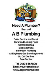 burst pipe flyers