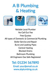 reliable local plumber flyers