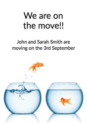goldfish moving cards