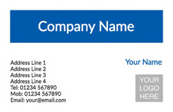 blue horizontal logo business cards